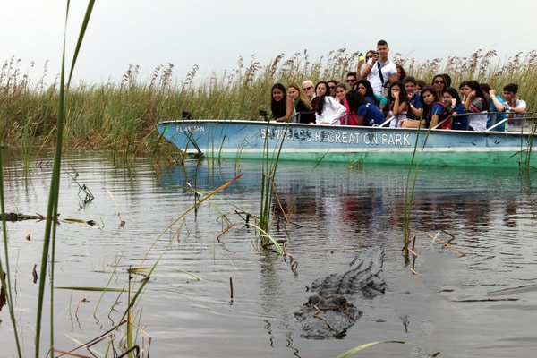 LAL-US-SS-BR-Excursion-Everglades-052